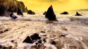 waves-1024x320